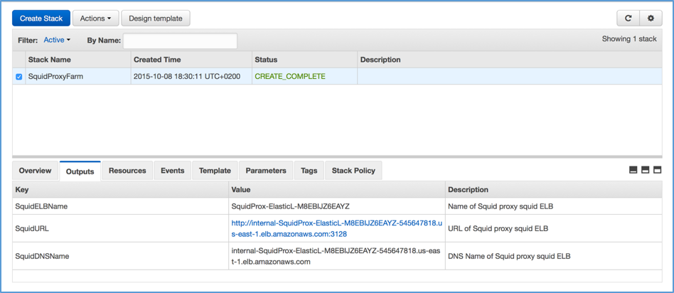Using Squid Proxy Instances For Web Service Access In